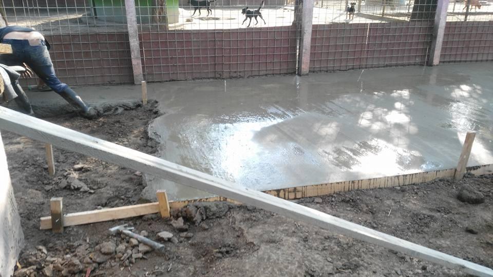 Ciment rodger7