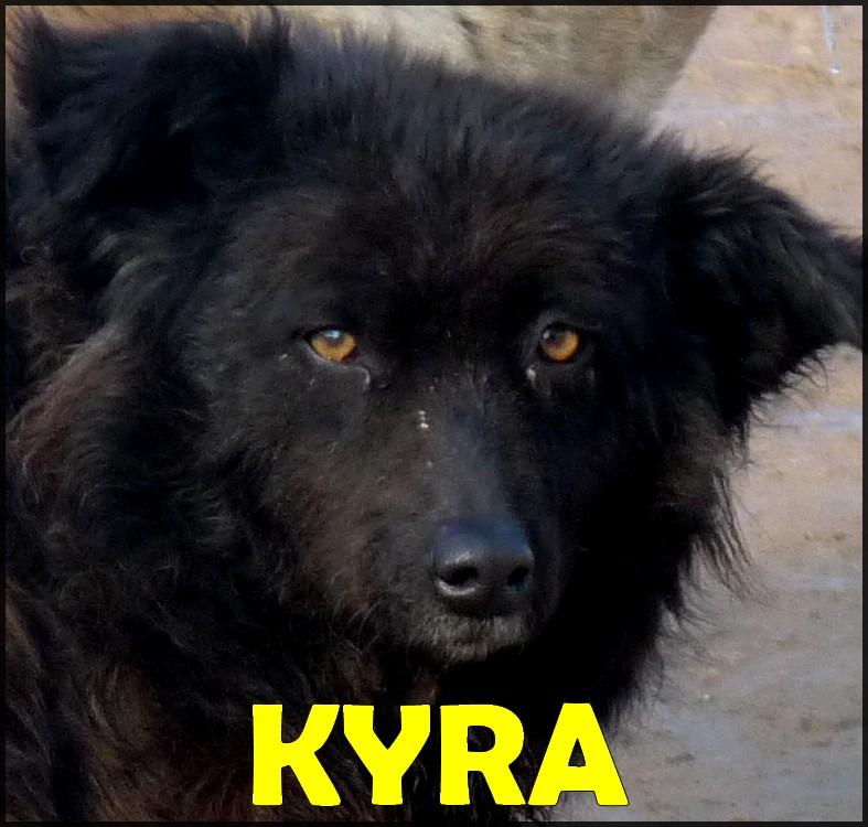 Kyra 2