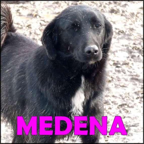 Medena 2